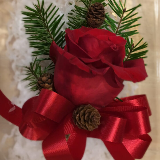 Boutonniere of deep red roses and green fir leaves